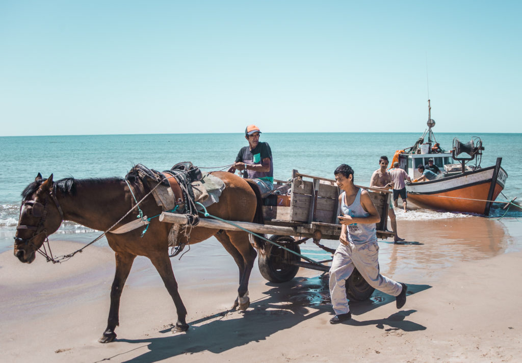 Fishermen using horse and cart on Beach in Punta del Diablo uruguay where to stay | South America travel guides