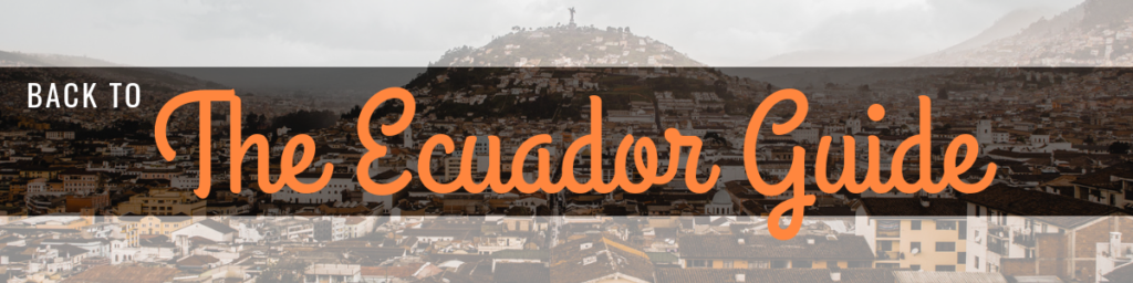 The Ecuador Guide by Cuppa to Copa Travels