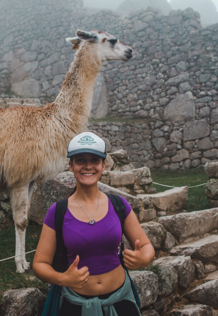 llama flame machu picchu tourist tourism peru alpaca travel guide spanish mistakes tips south america
